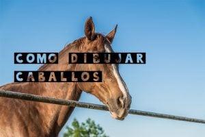 aprende a dibujar caballos